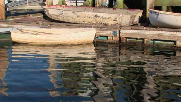 Rowboats tied to a dock reflect in the harbor. Royalty-free stock video