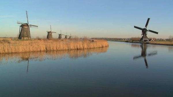 Windmills line a canal in Holland. Royalty-free stock video