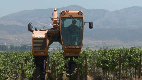 Timelapse of mechanized tilling in a Monterey County vineyard California Royalty-free stock video
