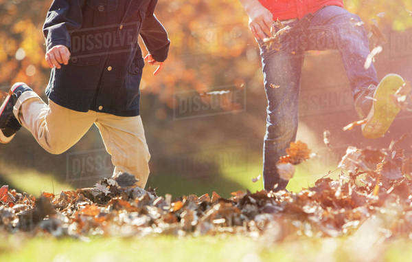 Playful boys kicking autumn leaves Royalty-free stock photo