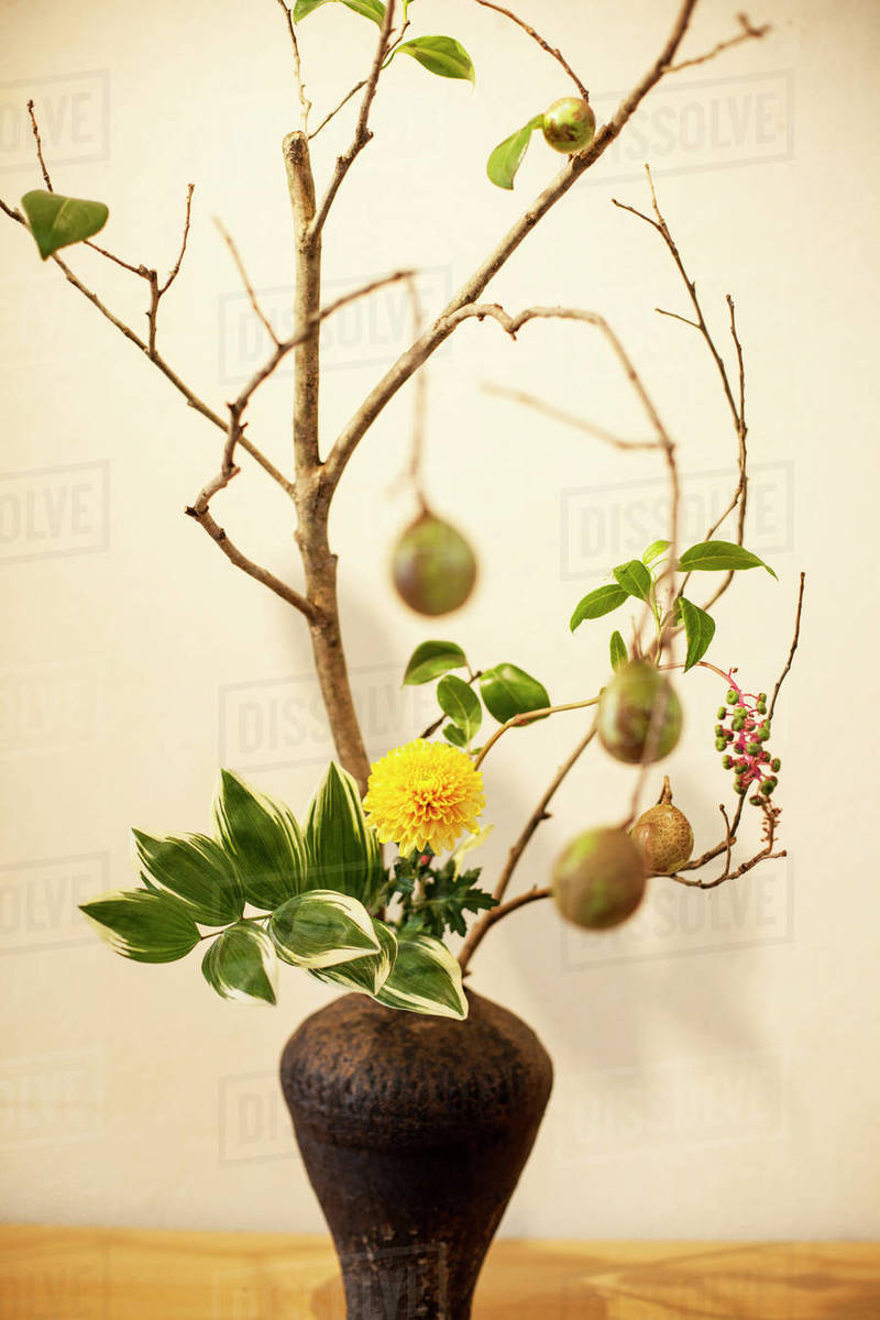 Close Up Of Ikebana Arrangement With Branches Leaves Fruit
