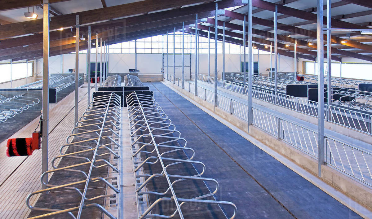 Empty animal pens at dairy farm stock photo
