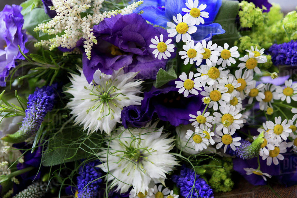 Close Up Of A Bouquet Of Blue And White Wedding Flowers Stock
