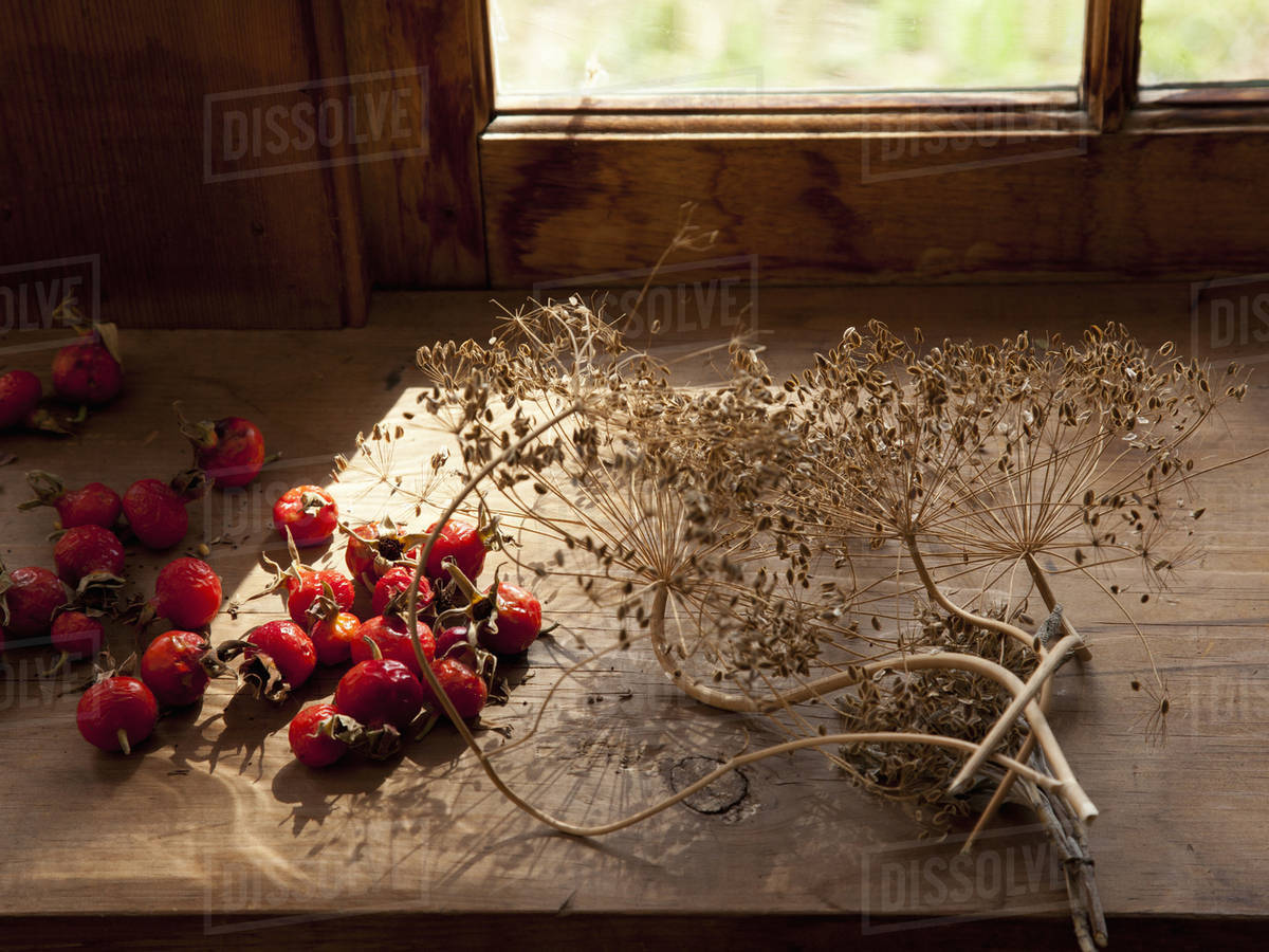 Collecting and storing the fruits of the garden for winter, dried ...