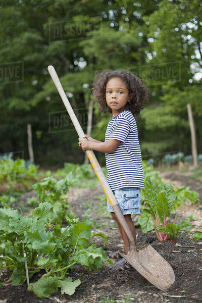 A young African American boy holding a long handled space, working in an organic vegetable garden. Royalty-free stock photo