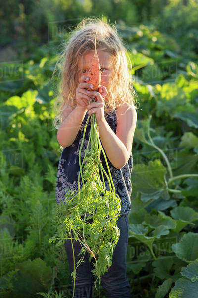 A young girl with long red curly hair outdoors in a garden, holding freshly picked carrots.  Royalty-free stock photo