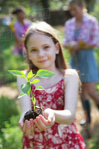 A woman and a child working together in a garden. A young girl holding a young plant with green foliage and a healthy rootball in her hands. Royalty-free stock photo