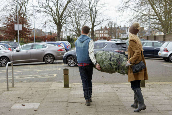 Two people carrying a netted Christmas tree to the car park.  Royalty-free stock photo