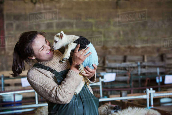 Woman standing in a barn, holding a newborn lamb dressed in a knitted jumper. Royalty-free stock photo
