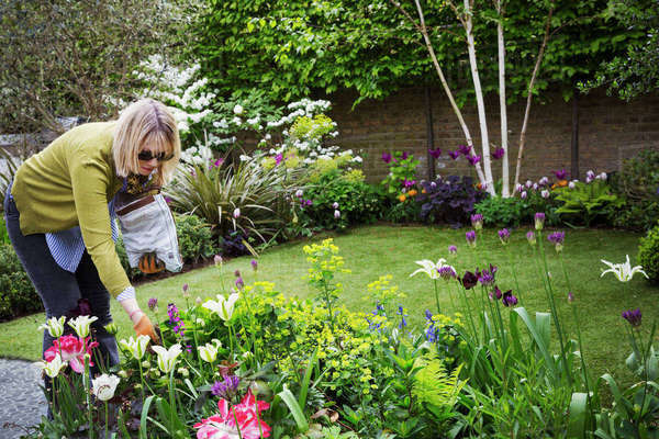 Woman standing in a garden, looking at flowers in a flowerbed. Royalty-free stock photo