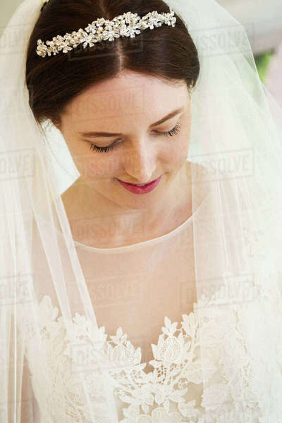 A bride in her wedding dress, tiara and veil, head and shoulders. A fashionable dress with lace bodice and net bodice and sleeves. Royalty-free stock photo