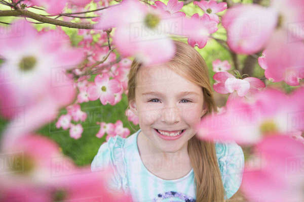 A young girl with long blonde hair looking through the blossom and branches of a tree in summer.  Royalty-free stock photo