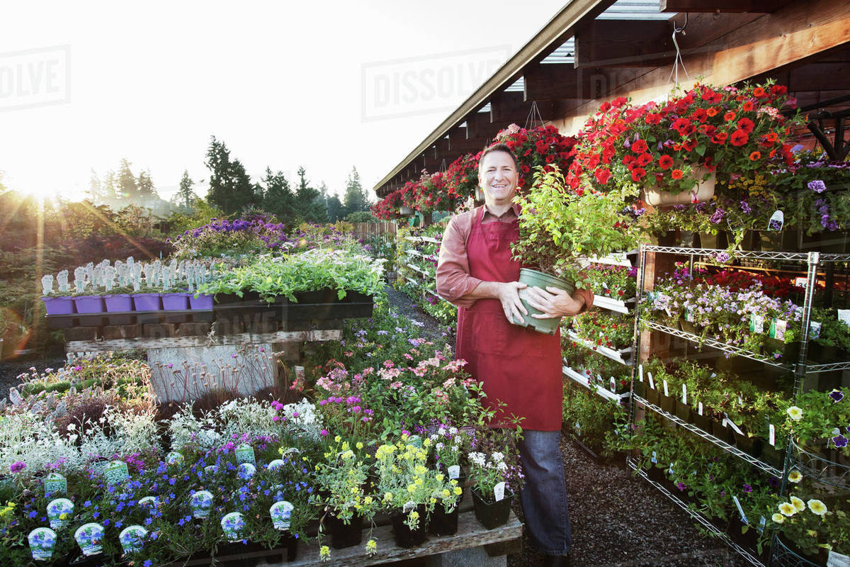 caucasian man nursery owner standing with plants for sale at the nursery.  stock photo