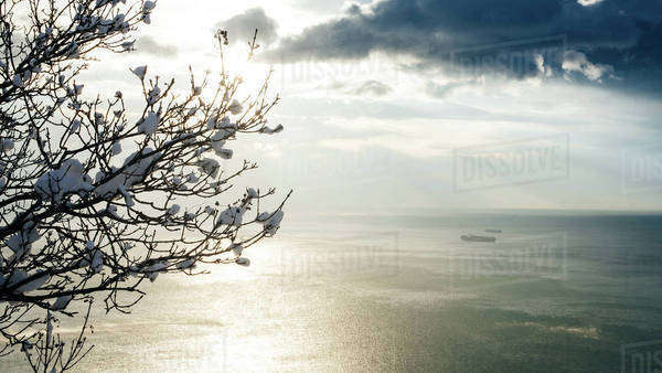 The Adriatic Sea in winter, Trieste, Italy Royalty-free stock photo