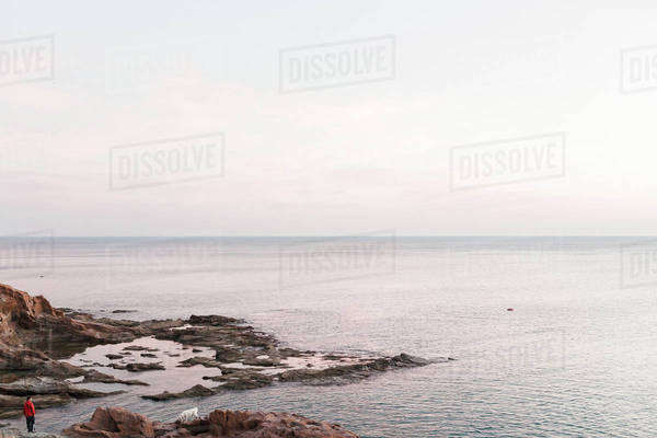Man walking his dog on a rocky coast at sunset Royalty-free stock photo