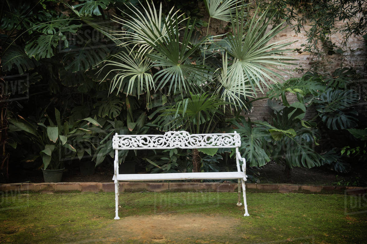 Spain, Andalusia, Seville, La Macarena, Ornate Garden Bench With Palm Plant