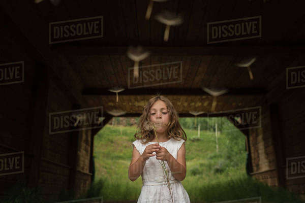 Girl blowing dandelion seeds while standing under shed Royalty-free stock photo