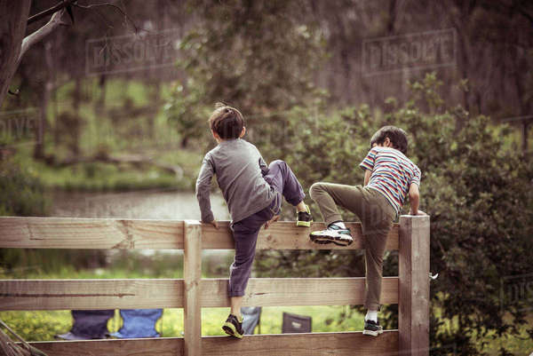 Rear view of friends climbing wooden fence in park Royalty-free stock photo