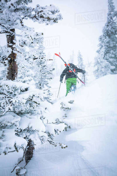 Rear view of male hiker hiking on snow covered hill in forest Royalty-free stock photo