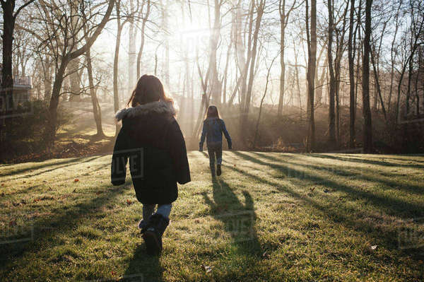 Rear view of sisters walking on grassy field in forest during sunny day Royalty-free stock photo