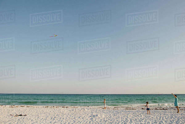 Family flying kite at beach against clear sky Royalty-free stock photo