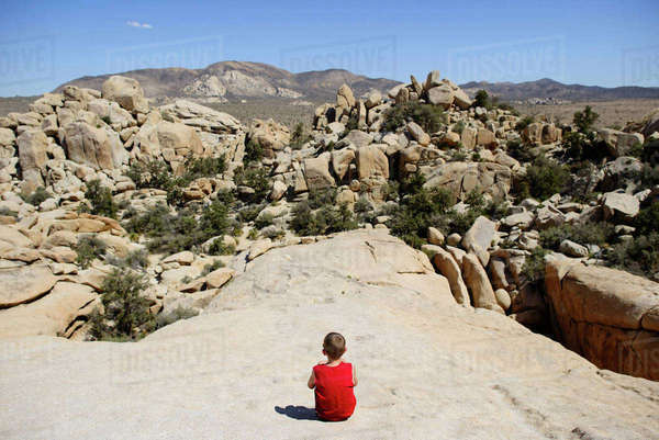 Rear view of boy looking at rock formations while sitting at Joshua Tree National Park against sky Royalty-free stock photo