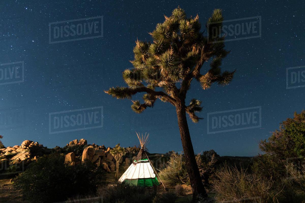 Illuminated Teepee At Joshua Tree National Park Against Star Field D1061 170 178