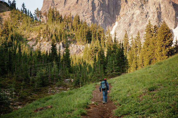 Hiker walking on pathway towards trees and mountains Royalty-free stock photo