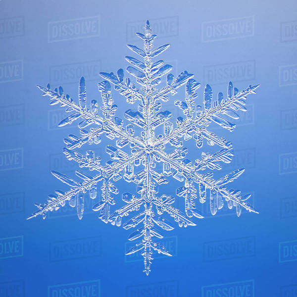Microscopic image of actual snowflake Royalty-free stock photo