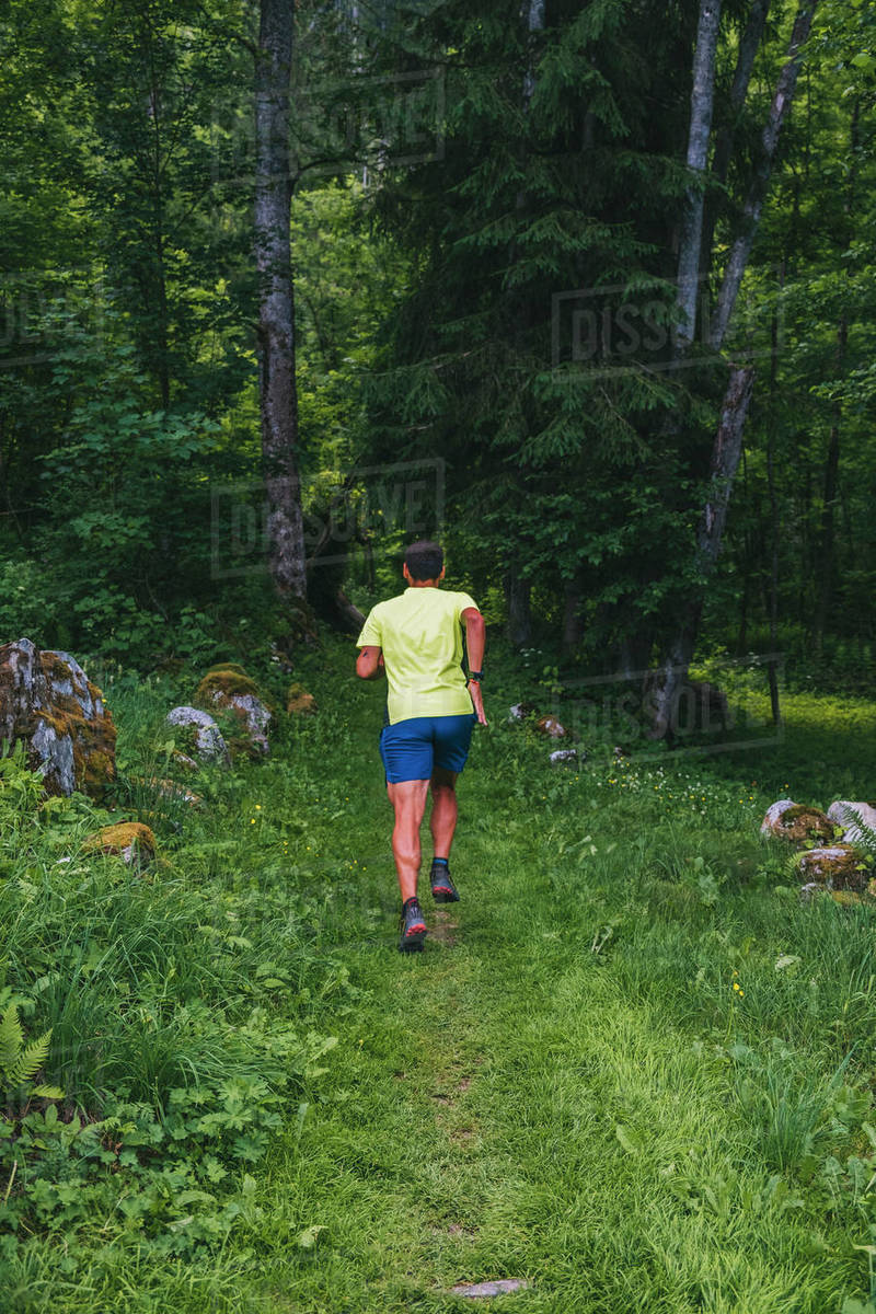A young man trail runs through Chamonix forest, France. Royalty-free stock photo