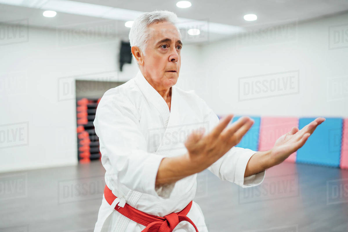 Senior Karate master performing combat techniques Royalty-free stock photo