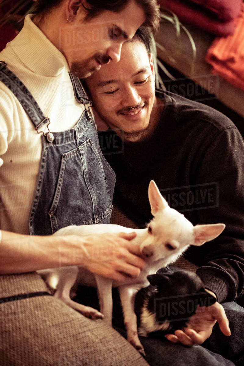 Gay male inter-racial couple cuddle and smile with dogs at home Royalty-free stock photo
