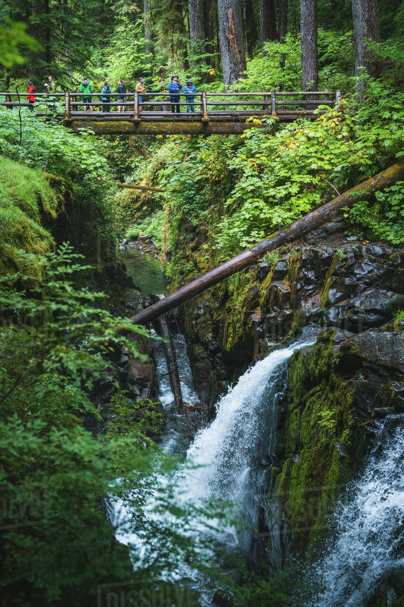 Front view of group on bridge viewing a waterfall Royalty-free stock photo