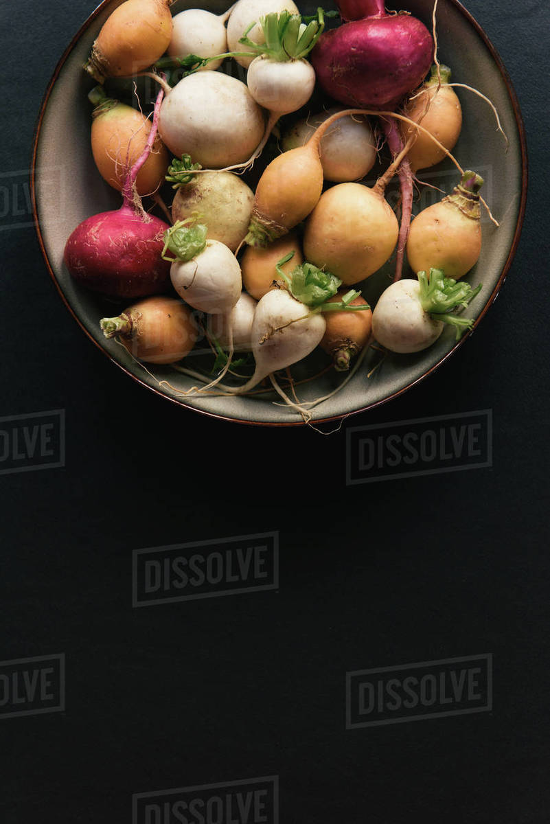Multi colored radish fresh from the garden from overhead Royalty-free stock photo