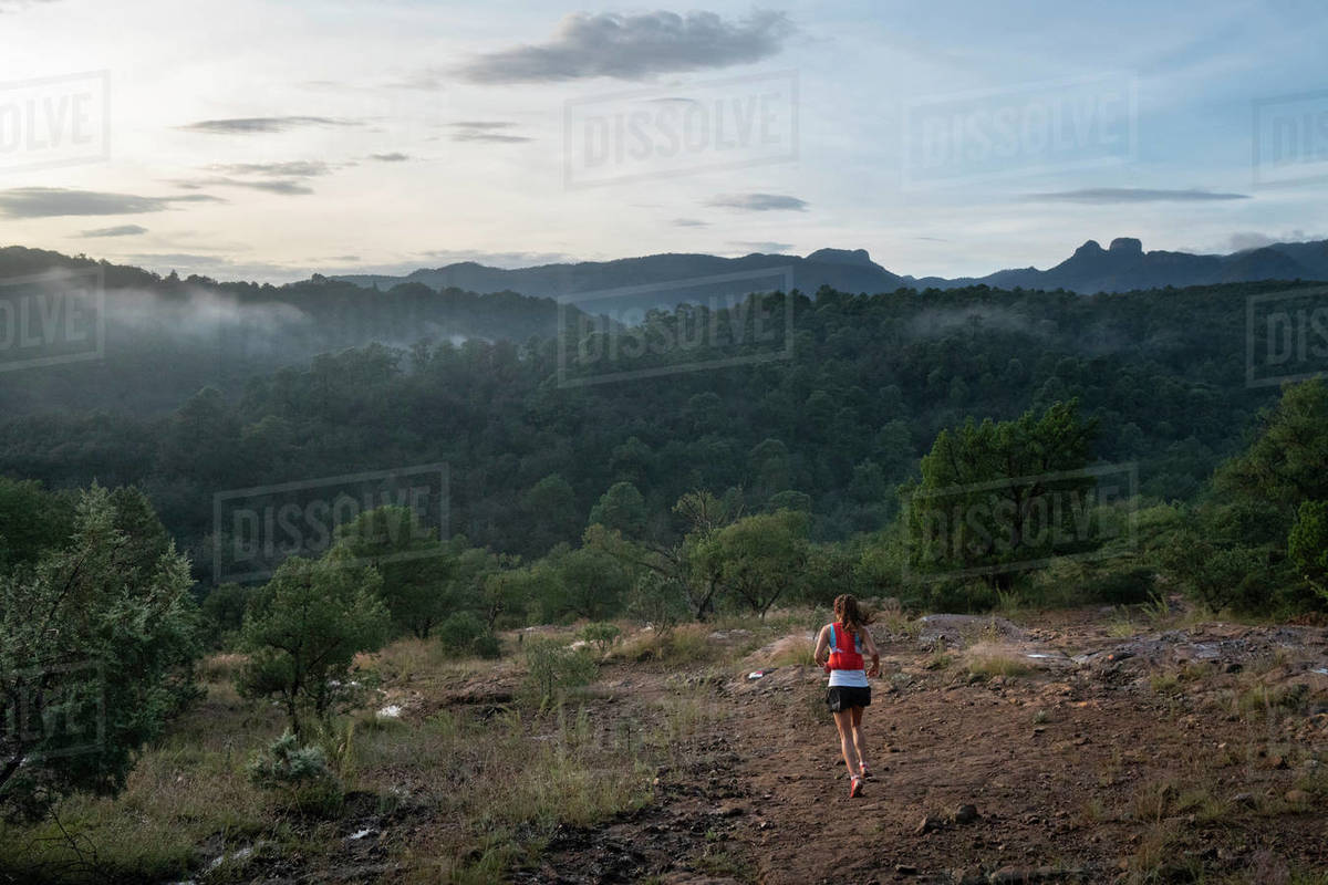 One woman running by herself on a trail in the early morning Royalty-free stock photo