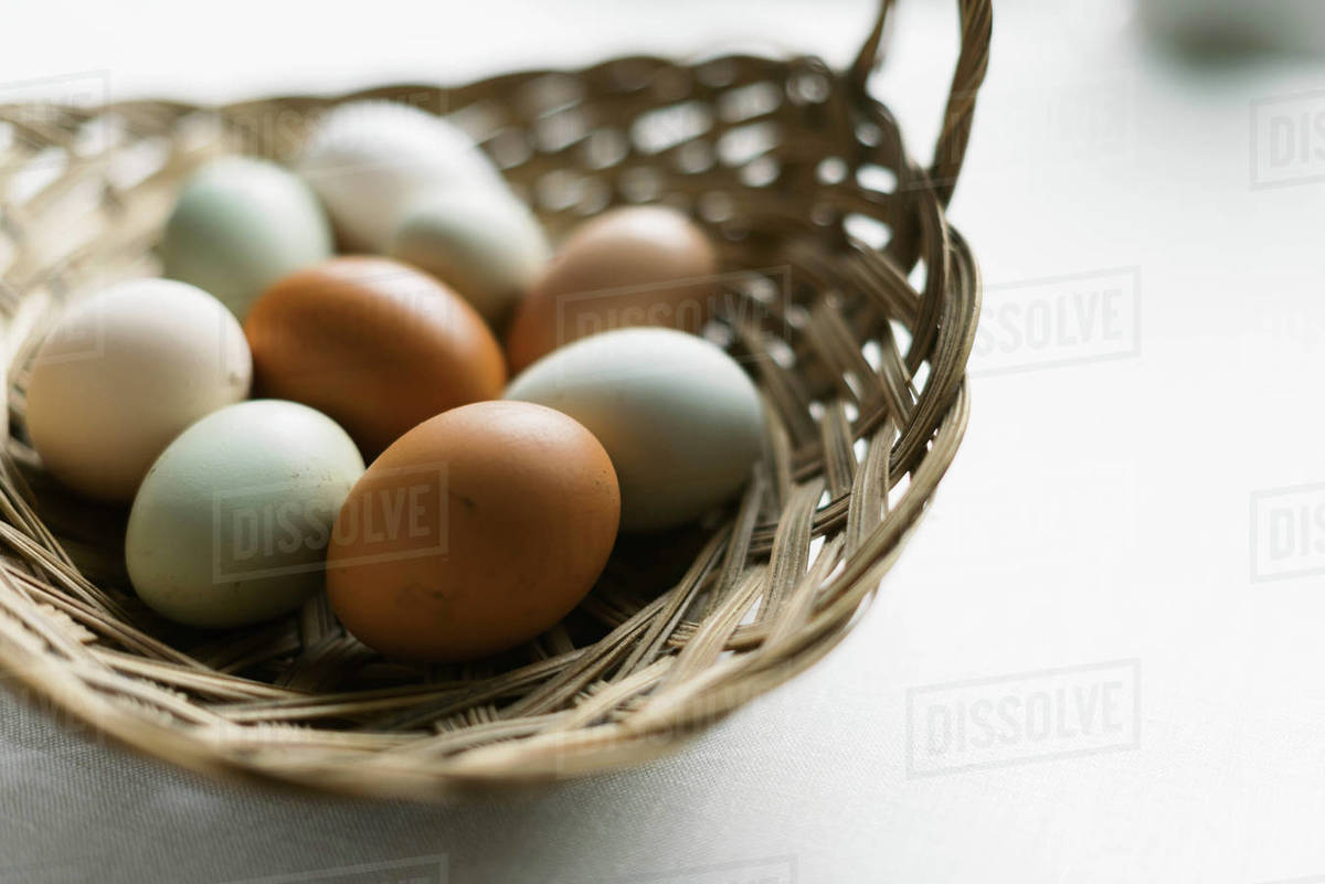Fresh eggs from the chicken coop. Royalty-free stock photo