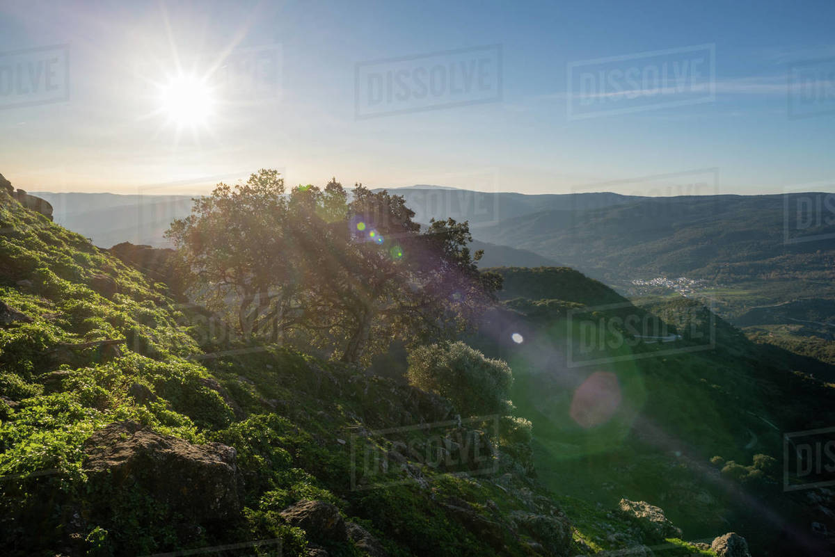 Andalusian Mediterranean landscape at sunset. Solar star and light flares. Mountains from a high point of view. Royalty-free stock photo