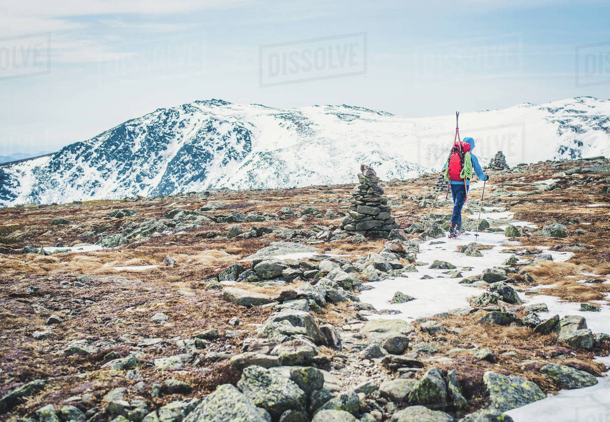 Man following cairns across snow and ice with skis on back Royalty-free stock photo