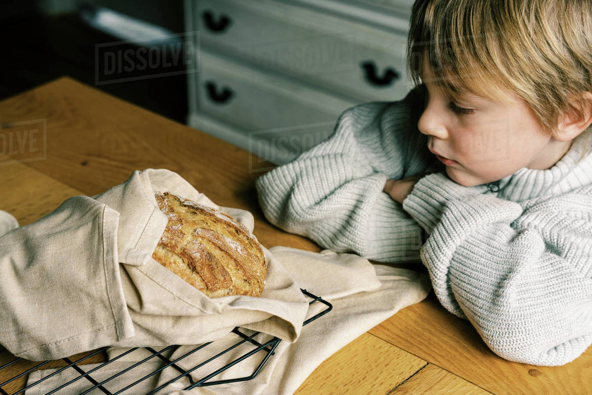 A child looking at a fresh baked artisan sourdough bread on the table Royalty-free stock photo