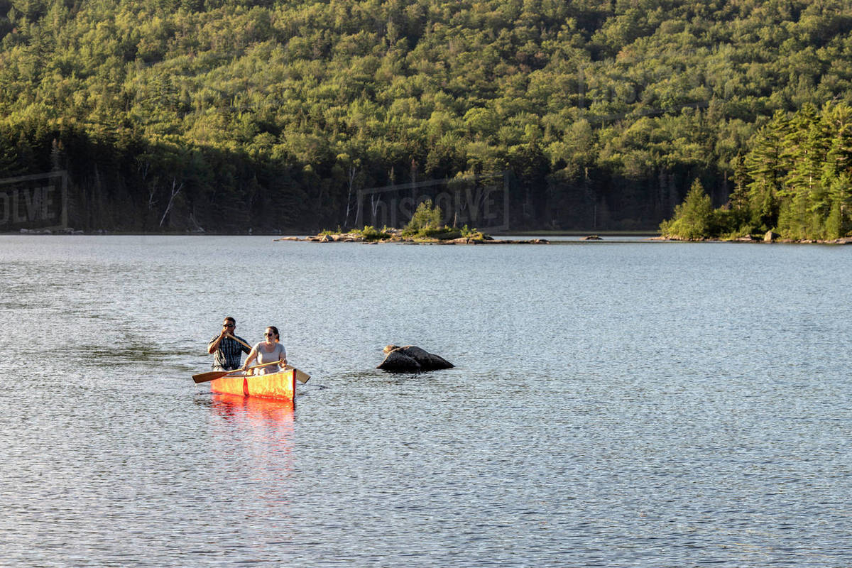 Multi racial couple paddles canoe across peaceful lake in Maine woods Royalty-free stock photo