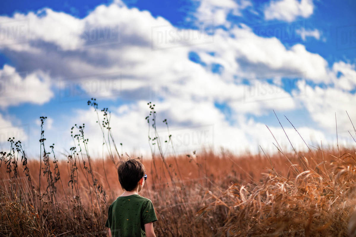 A boy walking through a field of tall grass on a cloudy day Royalty-free stock photo