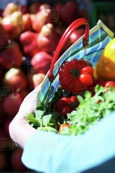 Fresh tomatoes and herbs in a checked shopping bag Royalty-free stock photo