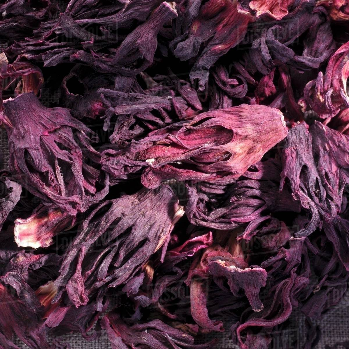Dried Hibiscus Flowers Full Frame Stock Photo Dissolve