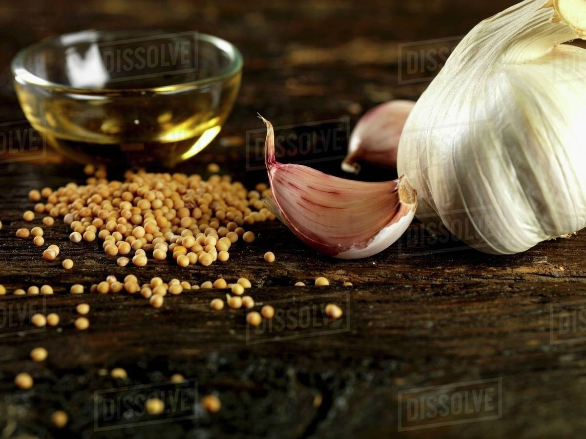 Garlic, mustard seeds and olive oil stock photo