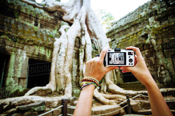 Cambodia, Angkor Wat, Woman takes pictures of the famous tree in Ta Prohm Temple Royalty-free stock photo
