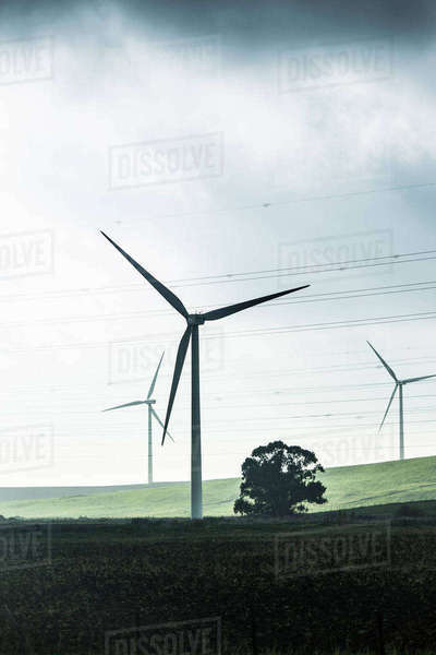 Spain, Andalusia,Tarifa, three wind wheels on a hill Rights-managed stock photo
