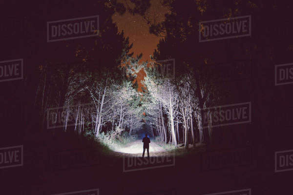 Silhouette of a man standing on forest track at night illuminating the woods with a flashlight Rights-managed stock photo