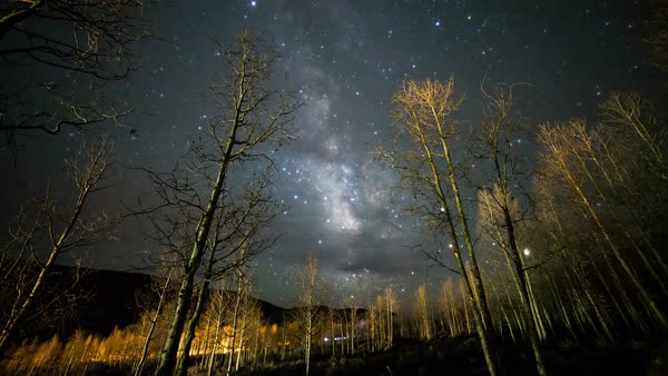 Night timelapse of galaxy moving through the sky till dawn through a forest of aspen trees Royalty-free stock video