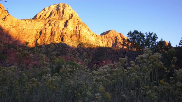 View of  cliff at sunset glowing in Zion National Park. Royalty-free stock video
