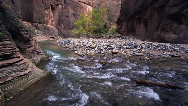 Panning view of the Zion Narrows in Utah Royalty-free stock video